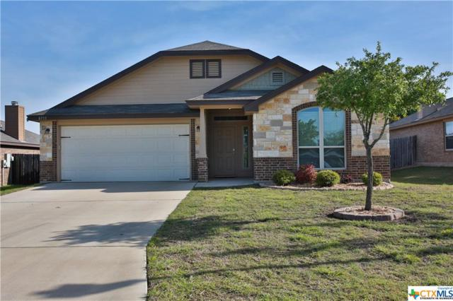 8533 Lamp Light Ct, Temple, TX 76502 (MLS #344039) :: Magnolia Realty