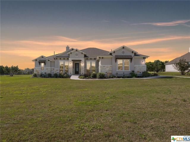 309 Bold Sundown, Liberty Hill, TX 78642 (MLS #344083) :: Erin Caraway Group