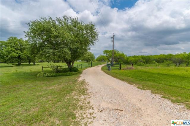 14199 E State Highway 97, Waelder, TX 78959 (MLS #344229) :: Erin Caraway Group