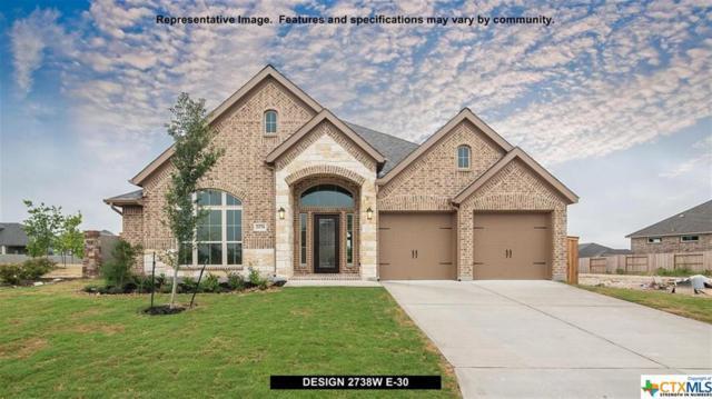 204 Durata Drive, San Marcos, TX 78666 (MLS #344348) :: Erin Caraway Group