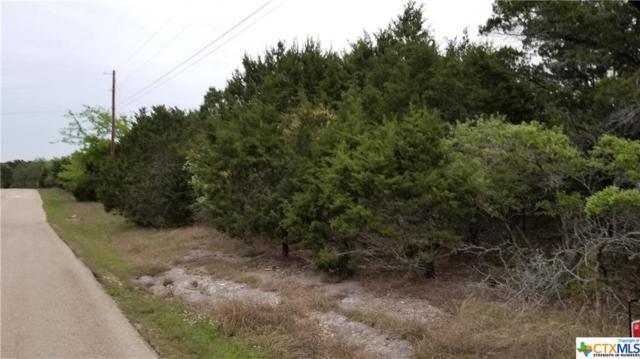 15765 Salado, Belton, TX 76513 (MLS #344519) :: Magnolia Realty