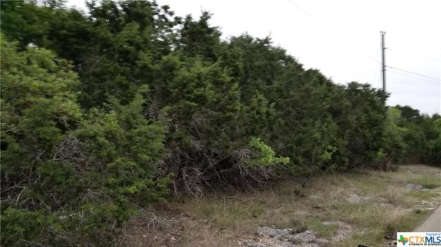 15759 Salado, Belton, TX 76513 (MLS #344520) :: Magnolia Realty
