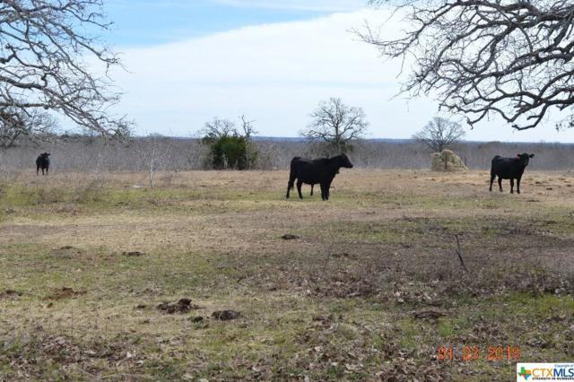 1120 Armstrong Road, Waelder, TX 78629 (MLS #344543) :: Erin Caraway Group