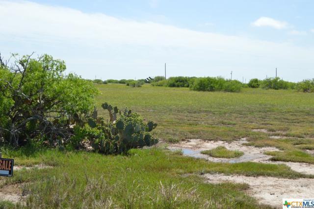 00 Ladyfish, Palacios, TX 77465 (MLS #344676) :: Kopecky Group at RE/MAX Land & Homes