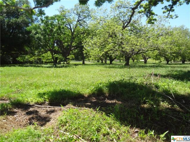 21 E Hampton & E Hampton, Seguin, TX 78155 (MLS #344722) :: Erin Caraway Group