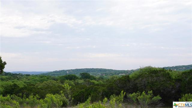 206 Arroyo, Canyon Lake, TX 78133 (MLS #344830) :: Magnolia Realty