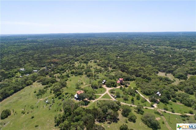 San Marcos, TX 78666 :: Kopecky Group at RE/MAX Land & Homes