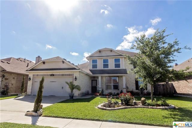 109 Terravista Trail, Victoria, TX 77904 (MLS #344961) :: RE/MAX Land & Homes