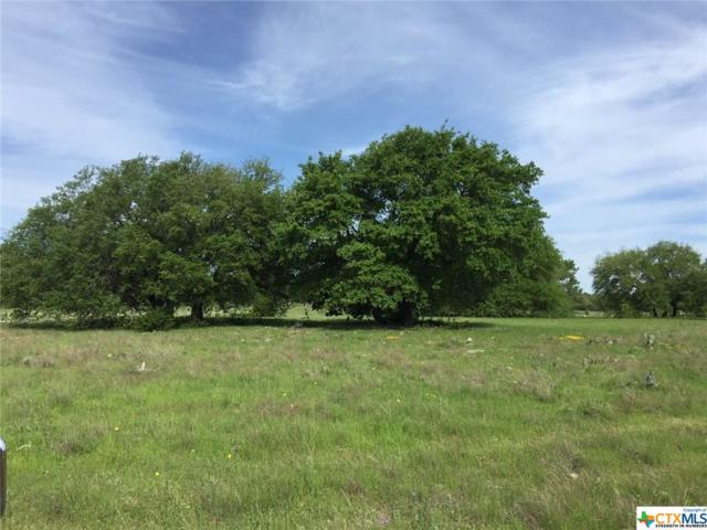 1992 County Road 274, OTHER, TX 76528 (MLS #344979) :: Erin Caraway Group
