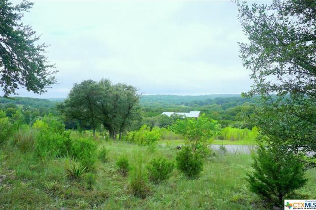 2215 Sierra Madre, Canyon Lake, TX 78133 (MLS #344981) :: Magnolia Realty