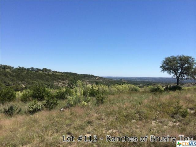 1176 Brushy Top Trail, Blanco, TX 78606 (MLS #345069) :: Magnolia Realty