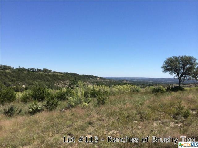 1176 Brushy Top Trail, Blanco, TX 78606 (MLS #345069) :: Magnolia Realty