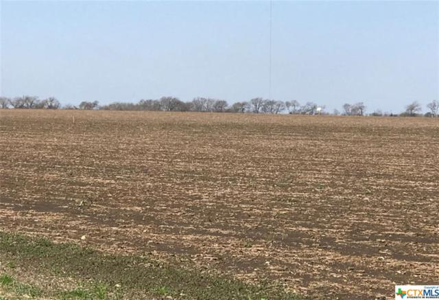 0 Mackey Ranch Rd - 20 Acre Tract, Bruceville-Eddy, TX 76524 (MLS #345070) :: Erin Caraway Group
