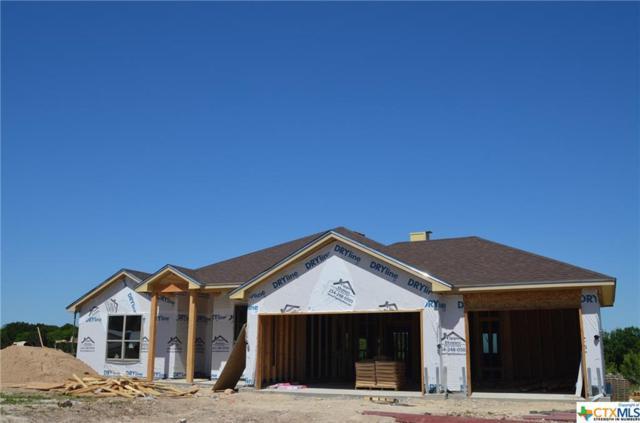 5505 Imogen Drive, Belton, TX 76513 (MLS #345169) :: Magnolia Realty