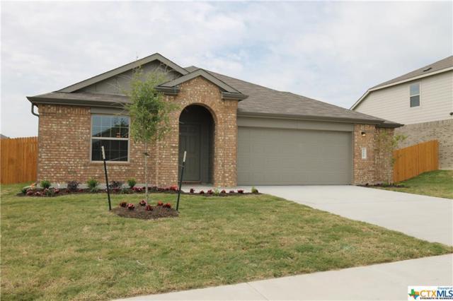 3706 Endicott, Killeen, TX 76549 (MLS #345256) :: Texas Premier Realty