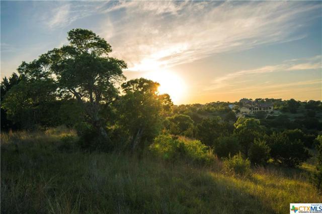 121 Serene, Spring Branch, TX 78070 (MLS #345267) :: Erin Caraway Group