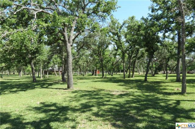 000 Padre Lane, Victoria, TX 77905 (MLS #345269) :: Magnolia Realty