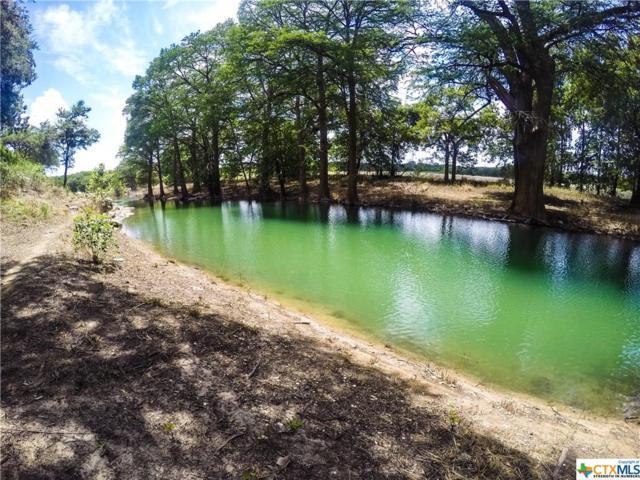 154 Double Tree, Canyon Lake, TX 78133 (MLS #345330) :: Magnolia Realty