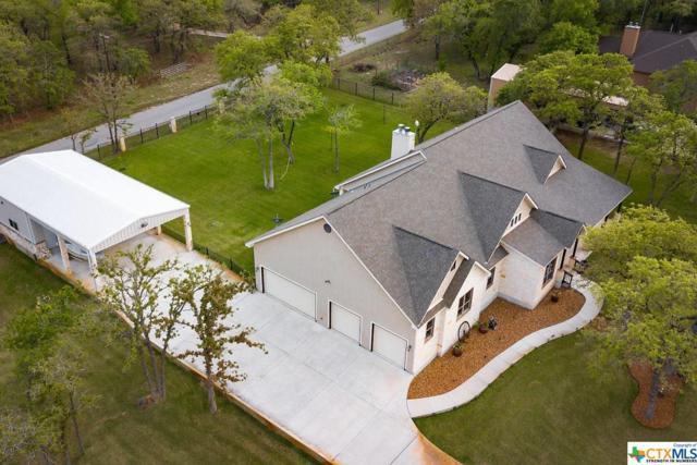 120 Hidden Forest Drive, La Vernia, TX 78121 (MLS #345417) :: Magnolia Realty