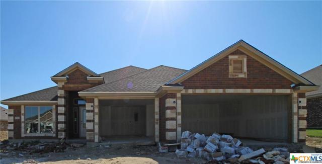 7703 Zircon Drive, Killeen, TX 76542 (MLS #345610) :: Erin Caraway Group