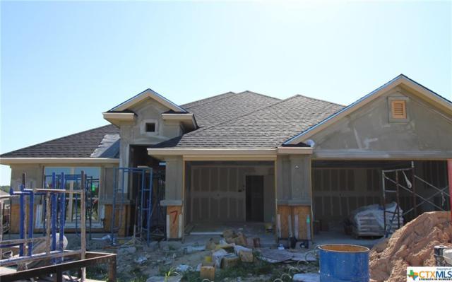 7707 Zircon Drive, Killeen, TX 76542 (MLS #345611) :: Texas Premier Realty