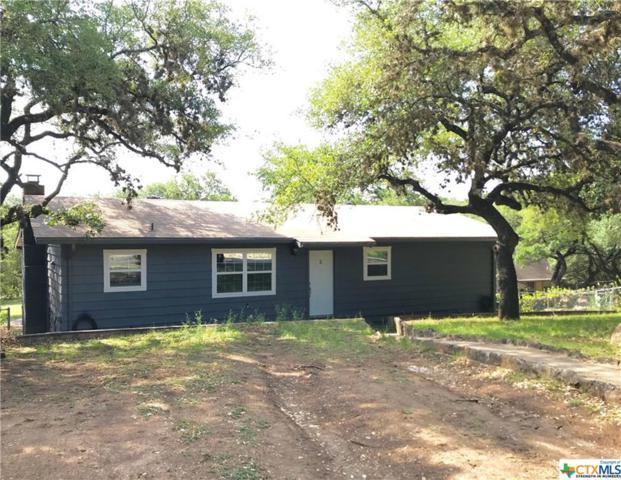 164 Lost Oak, Canyon Lake, TX 78133 (MLS #345676) :: Erin Caraway Group