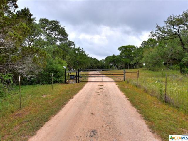 301 Caliche Trail, San Marcos, TX 78666 (MLS #345707) :: The Suzanne Kuntz Real Estate Team