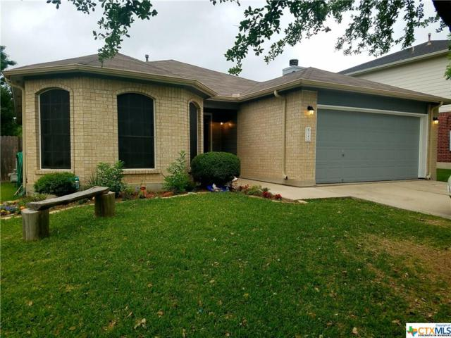 141 Orion Cove, Kyle, TX 78640 (MLS #345895) :: Magnolia Realty