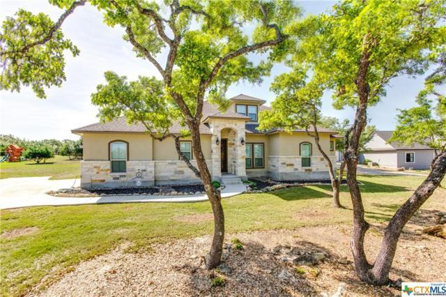 183 Lantana Vista, Spring Branch, TX 78070 (MLS #345991) :: The Suzanne Kuntz Real Estate Team