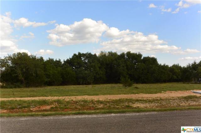 102 John Price, Blanco, TX 78606 (MLS #346242) :: Magnolia Realty