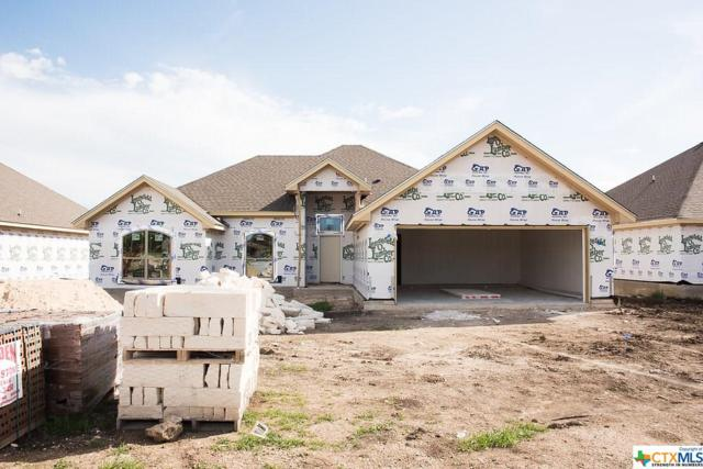 2510 Paisley Drive, Temple, TX 76502 (MLS #346342) :: The Suzanne Kuntz Real Estate Team