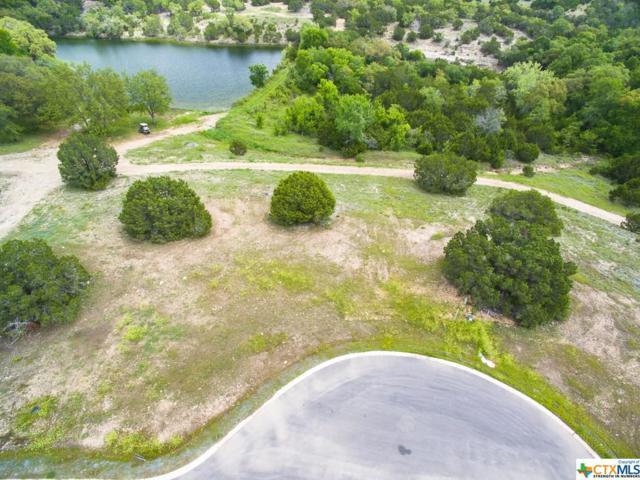 129 Quiet Oak Cove, Liberty Hill, TX 78642 (MLS #346374) :: Erin Caraway Group