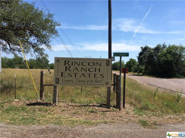 11 River Road, Goliad, TX 77963 (MLS #346571) :: Erin Caraway Group