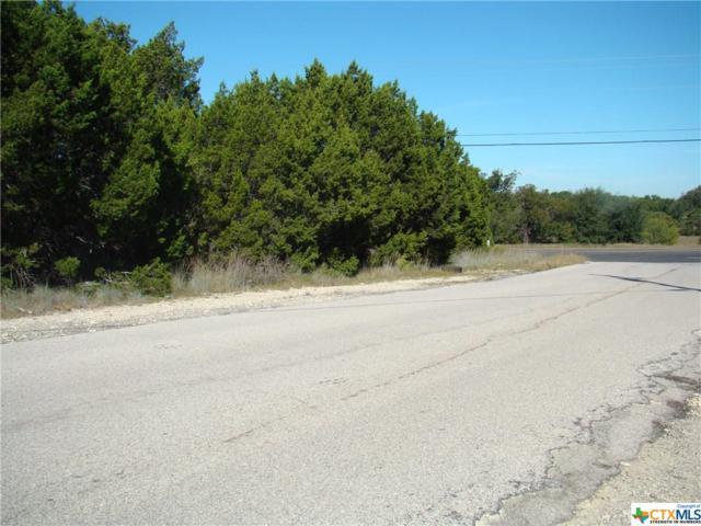 0 County Road 4804, Kempner, TX 76522 (MLS #346840) :: Erin Caraway Group