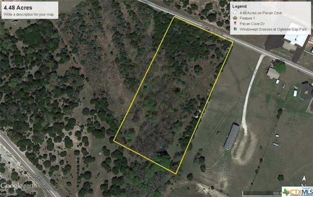4.48 acres Pecan Cove, Copperas Cove, TX 76522 (MLS #346896) :: Magnolia Realty