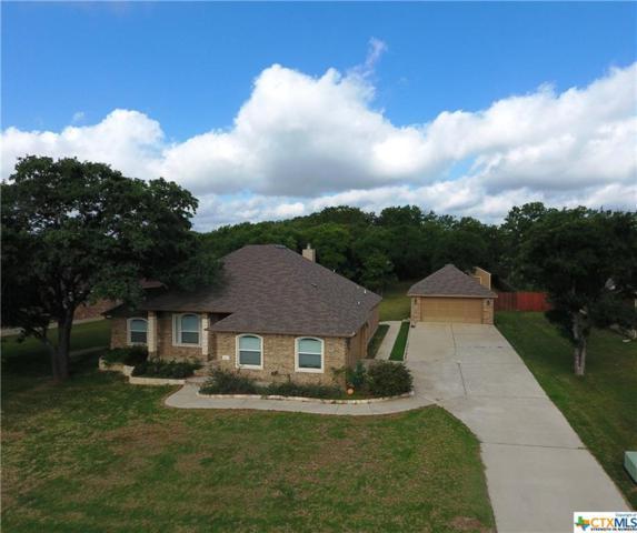 2503 Twin Ridge Court, Belton, TX 76513 (MLS #346922) :: Magnolia Realty