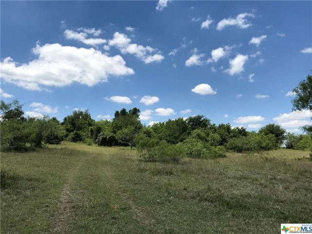 415 Tower Road Lot 1, Lockhart, TX 78644 (MLS #347071) :: Magnolia Realty