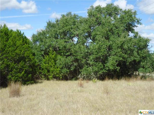 14 Cielo Springs Drive, Blanco, TX 78606 (MLS #347108) :: Magnolia Realty