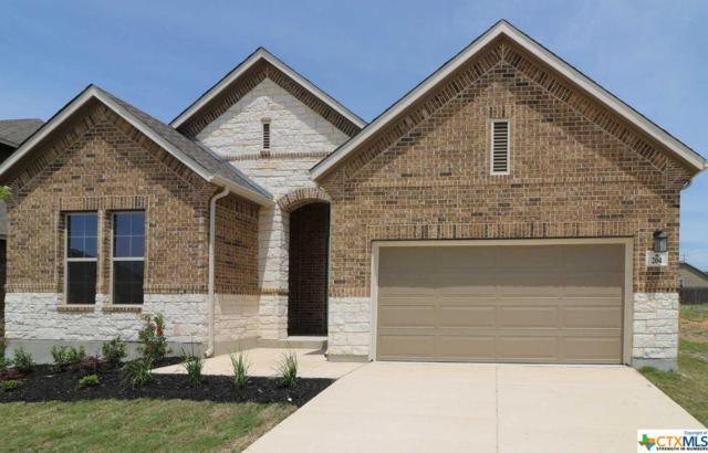 204 Kildare, Cibolo, TX 78108 (MLS #347256) :: Erin Caraway Group