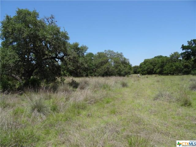 1055 Fabled, Spring Branch, TX 78070 (MLS #347259) :: Magnolia Realty