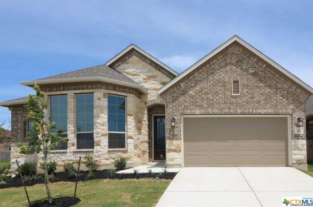 224 Kildare, Cibolo, TX 78108 (MLS #347271) :: Erin Caraway Group
