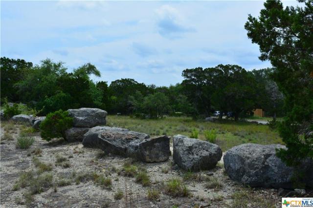 1645 & 1675 Oblate Drive, Canyon Lake, TX 78133 (MLS #347315) :: RE/MAX Land & Homes