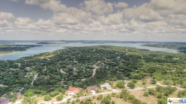 1991 Bella, Canyon Lake, TX 78133 (MLS #347383) :: Magnolia Realty