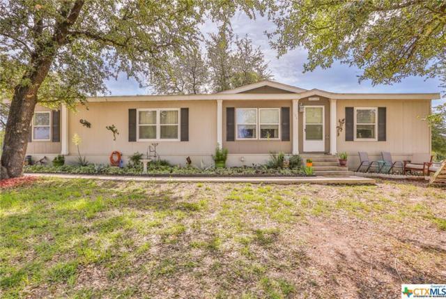 104 Calvary Drive, Belton, TX 76513 (MLS #347415) :: Magnolia Realty