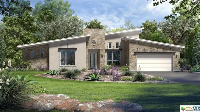 113 Dreaming Plum Lane, San Marcos, TX 78666 (MLS #347504) :: Magnolia Realty