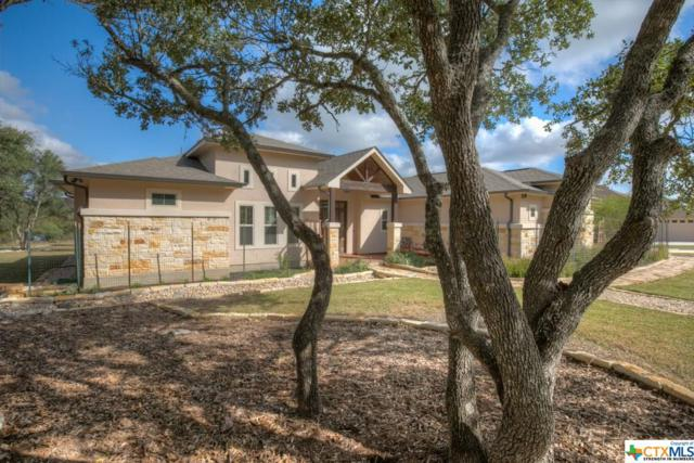 471 Shady Hollow, New Braunfels, TX 78132 (MLS #347525) :: Erin Caraway Group