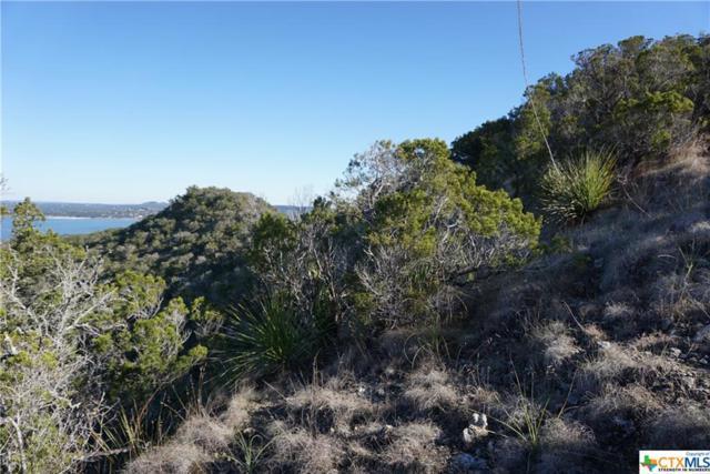 1018 El Capitan, Canyon Lake, TX 78133 (MLS #347593) :: Magnolia Realty