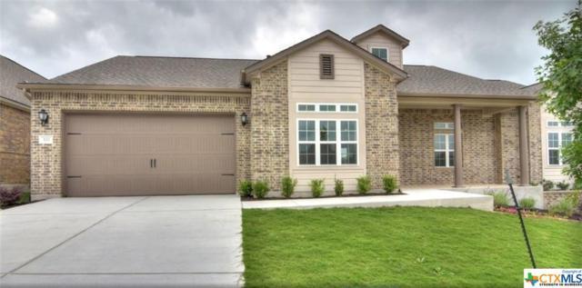 120 Dreaming Plum Lane, San Marcos, TX 78666 (MLS #347672) :: Magnolia Realty
