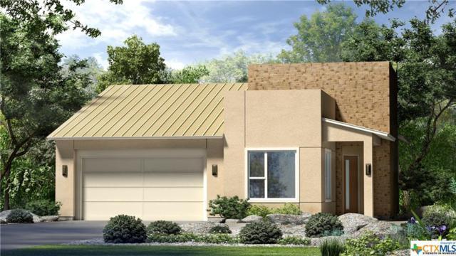 220 Jumping Laurel Street, San Marcos, TX 78666 (MLS #347675) :: Magnolia Realty