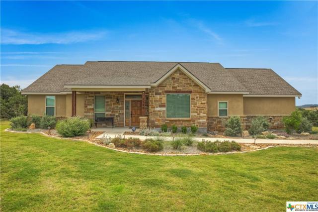 1126 Ensenada, Canyon Lake, TX 78133 (MLS #347678) :: Magnolia Realty